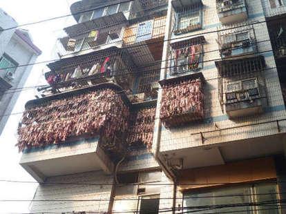 bacon apartment china