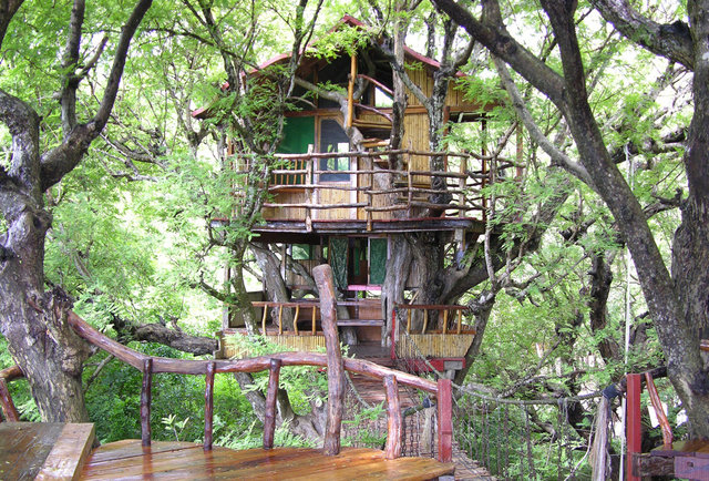 Treehouse Hotels The World 39 S 10 Coolest Treehouse Hotels