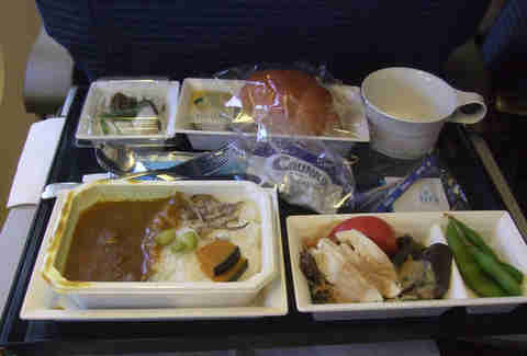 Gross airplane meal