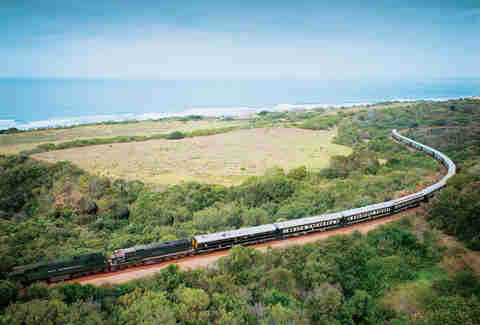 landscape, safari train