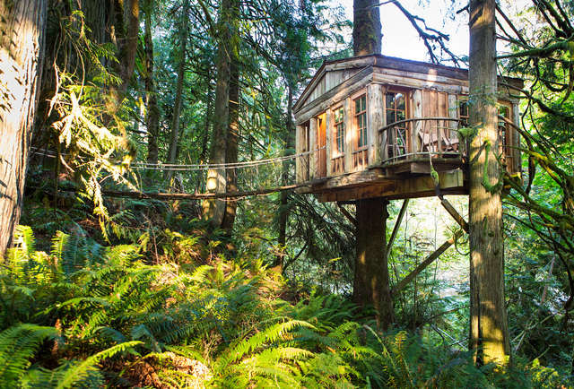 Treehouse hotels the world 39 s 10 coolest treehouse hotels for Build on your lot washington state