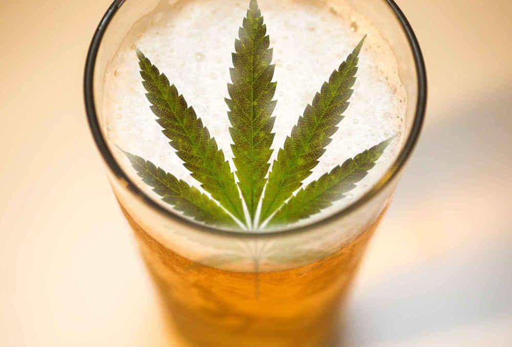 how to make pot infused beer marijuana beer thrillist nation