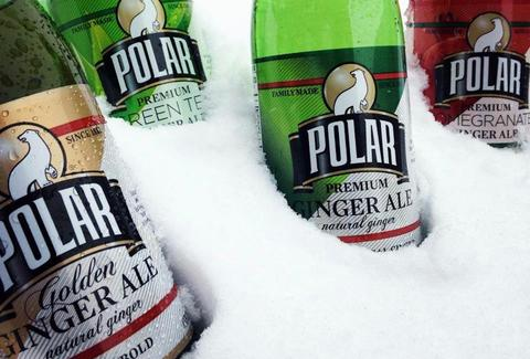 10 Things you Didn't know about Polar Sodas