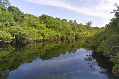 Rio Negro on the Amazon
