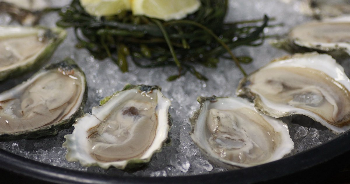 The 15 most delicious oysters any American could hope to eat