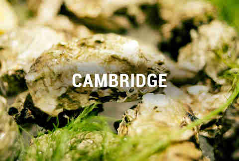 Cambridge Oyster Happy Hours BOS