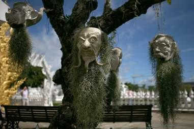 moss hanging head