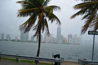 Miami Rainy Day