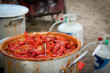 crawfish in pot