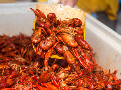 crawfish boil seafood spicy louisiana craw fish boils how to throw at home summer