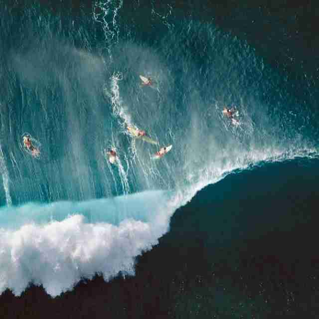surfers in hawaii