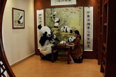 high tea with panda