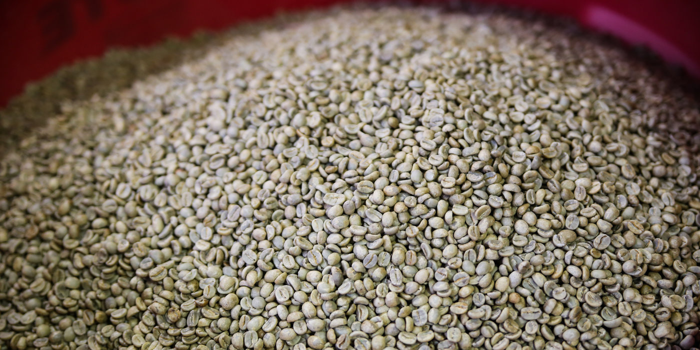 A look inside the highly caffeinated life of a coffee roaster