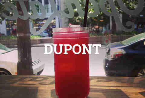 Dupont Boozy Brunches DC