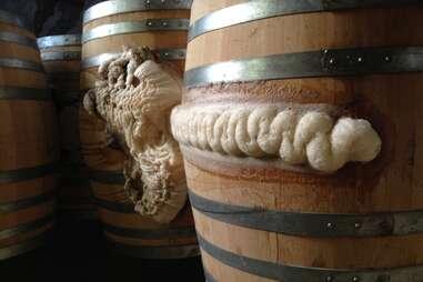 jester king barrel foam