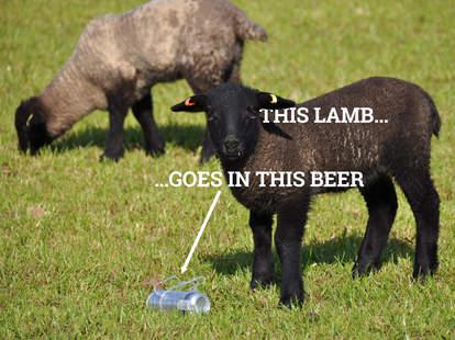 lamb and beer