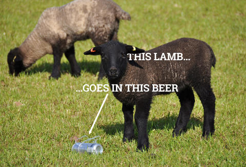 lamb and beer
