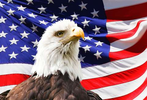 11 reasons why america is the land of the free things america can