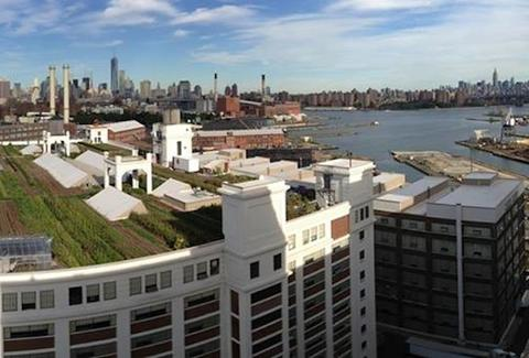Brooklyn Navy Yard Farm NY