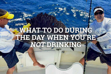 What to do during the day if you're not drinking