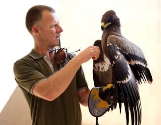 man with hawk