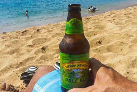 Pale Ale Summer Beer Picks HOU