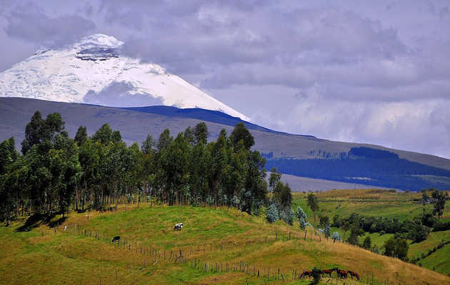 8 reasons you need to visit Ecuador right now