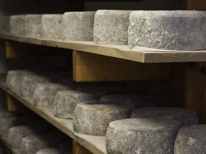 aging cheese
