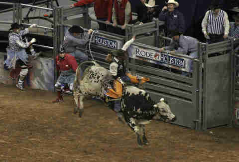 Rodeo Things you have to explain to out-of-towners about HOU