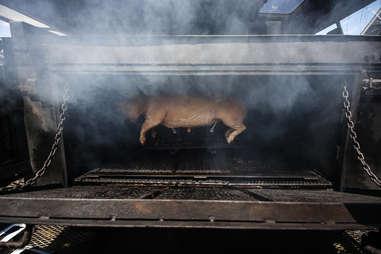 hog smoking