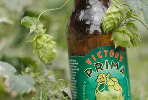 Victory Prima Pils Summer Beer Picks DET