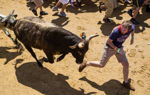 Wait, they're doing a Running of the Bulls... in the Bay Area??