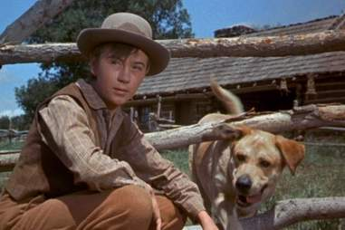 Old Yeller Best Fictional Characters HOU