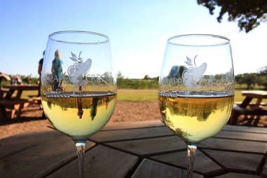 Wine Tasting in Fredericksburg Outdoor Spots Near Houston