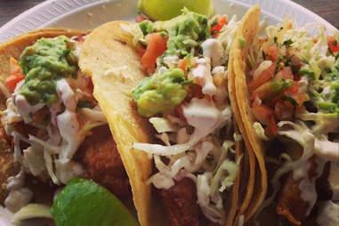 Kotija Jr. Taco Shop Best Fish Tacos SD