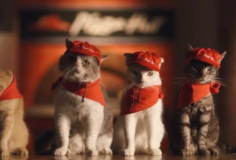 Pizza Hut Japan cats