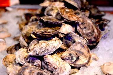 'Tis the season for oysters