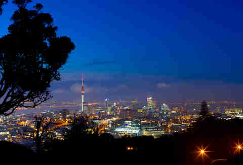 auckland study abroad