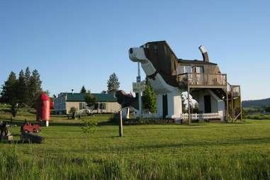 Dog Bark Aprk Inn Idaho