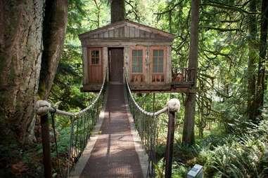 Tree House POint Fall City WA