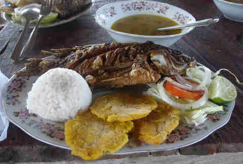 catagena lunch fish