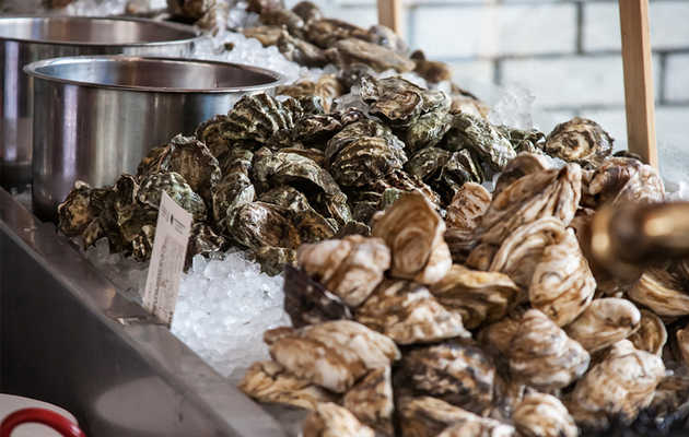 The 21 Best Oyster Bars in the Country