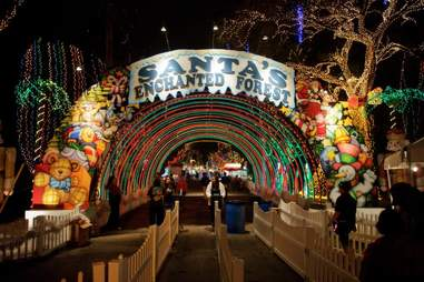 Sanrtas Enchanted Forest