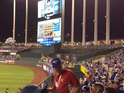 Kansas City Royals peanut guy