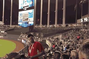 Kansas City Royals peanut guy throwing GIF