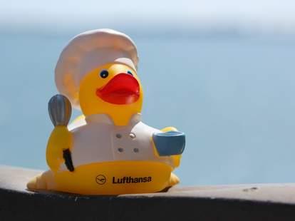 Lufthansa duck