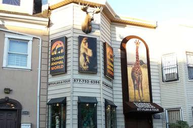 Torah Animal World