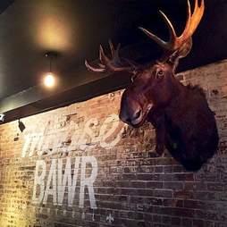Moose Bawr