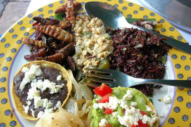 chapulines crickets tacos