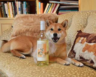 Shiba Sommelier Yard Dog White